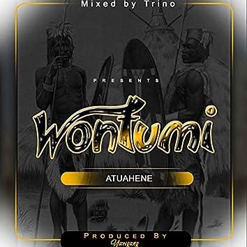 Wontumi