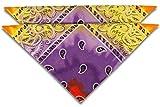 fashionchimp Nicki-Halstuch aus 100% Baumwolle im 2er Set, Unisex Bandana, AZO-Frei (Multicolor 02)