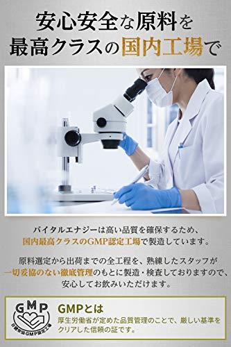 バイタルエナジーシトルリン24,000㎎アルギニン15,000㎎亜鉛マカ厳選10種サプリメント栄養機能食品180粒