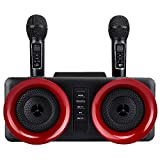 DAXINYANG Doppio Microfono Wireless con Altoparlante Bluetooth Family Home Karaoke Echo System Sistema di Canto Palmare Microfono Karaoke per Karaoke Notte A Casa Regalo di Natale