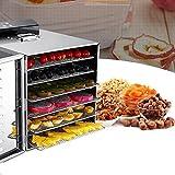Aosnow 食品乾燥機 フードディハイドレーター 6層 野菜 果物 キノコ 花 乾燥 ドライフルーツ 野菜ドライヤー 家庭用 食品グレード304 ステンレス鋼