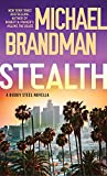 Stealth (Buddy Steel Thrillers)