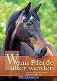Wenn Pferde älter werden: So bleibt der Senior gesund und fit (Haltung und Gesundheit)