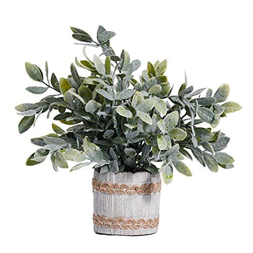yinyinpu Plante Plante Grasse Cuisine Décoration Décor à la Maison Bureau Décor Véranda Décor Artificielle Cactus Plantes en Pots Plante en Pot Intérieur Small