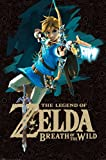 Pyramid America Legend of Zelda Breath of The Wild Link with Bow Shooting Arrow Video Game Gaming Cool Wall Decor Art Print Poster 24x36