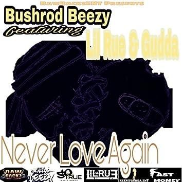 Never Love Again