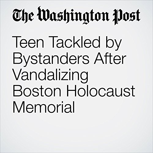 Teen Tackled by Bystanders After Vandalizing Boston Holocaust Memorial copertina