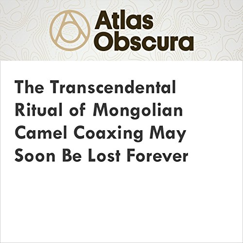 The Transcendental Ritual of Mongolian Camel Coaxing May Soon Be Lost Forever audiobook cover art
