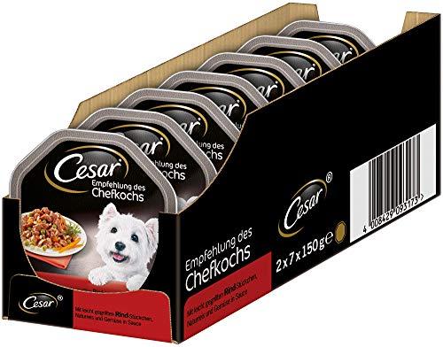 Cesar Hundefutter Nassfutter Empfehlung des Chefkochs mit leicht gegrillten Rind-Stückchen, Naturreis und Gemüse in Sauce, 14 Schalen (14 x 150g)