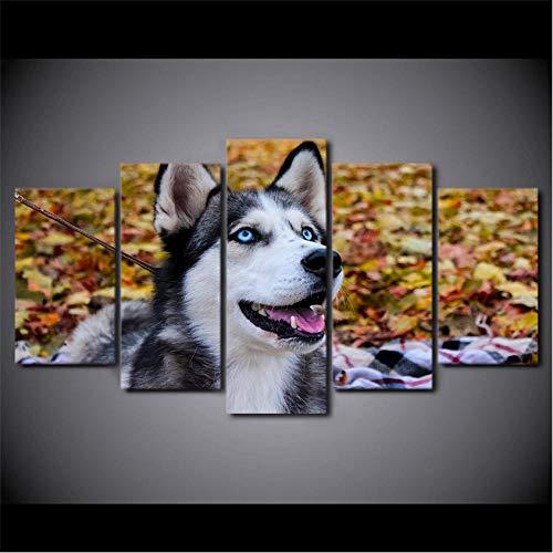 ganjue Moderne Wandkunst Leinwand Hd Gedruckt Modulare Bilder 5 Stücke Tier Husky Pet Gemälde Wohnkultur Blauen Augen Hund Poster-40Cmx60/80/100Cm,Without Frame