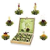 Creano Teeblumen Geschenkset in Teekiste aus Holz, 12 Erblühtee in 6 Sorten grüner Tee fruchtig aromatisiert, Fruity Flavor, Teerosen Tee Geschenk Weihnachten