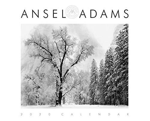 Ansel Adams 2020...