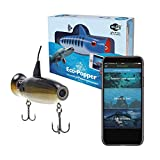 ECO-POPPER Underwater Live HD Camera & Fishing Lure with Free App (Golden Shiner) Portable, Waterproof & Wireless Fish Finder
