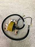 Lawn Mower Parts Fits Briggs_and_Stratton Coil 6,7,8HP Engine w/Points 298968
