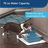 PetSafe Cat and Dog Water Fountain - Automatic Water Dispenser - Drinkwell Pagoda Ceramic Fountain for Pets - Filter Included - Blue - 70 oz, Model:PWW00-14898
