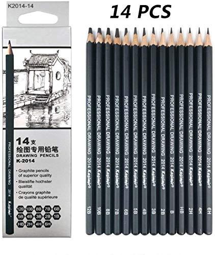 14 Pcs Lapices de Dibujo Profesional Kit de Dibujo Lápices de Dibujo Juego Para Dibujar y Dibujar Con Borradores Carbón Palo Sacapuntas Art Para Artistas Adultos Recargas de...