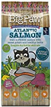 Little Big Paw Atlantic Salmon Dry Food for Adult Cats 1.5kg