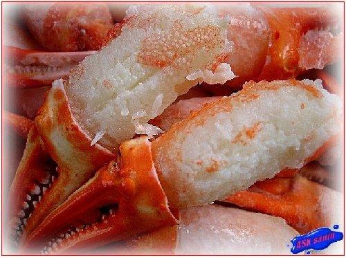 紅ずわい蟹親爪2L-500g 山陰境港産