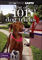 The Best of 101 Dog Tricks: Includes: 16 Best Dog Tricks Fun for You and Your Dog [DVD]