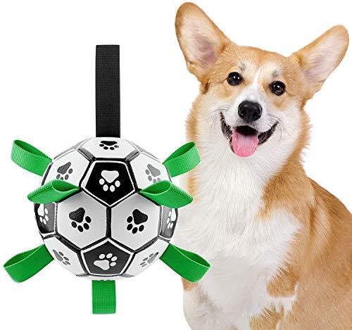 AUCHIKU Hundespielzeug Ball, Interaktives Hundeball Hund Wasserspielzeug Fußball Hund Zerrspielzeug Hund