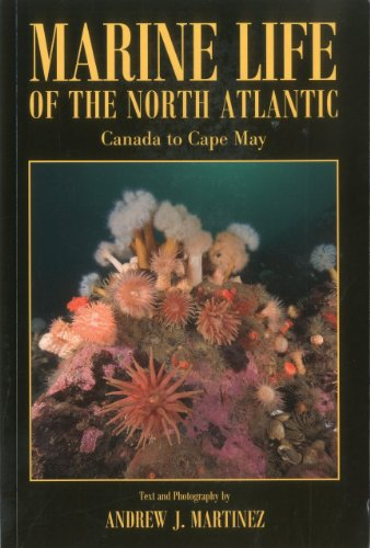 Marine Life of the North Atlantic: Canada to Cape May