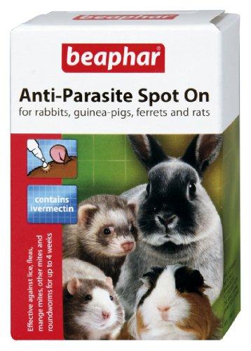 Beaphar Anti-Parasite Spot On for Rabbit and Guinea Pigs
