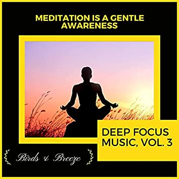 Meditation Is A Gentle Awareness - Deep Focus Music, Vol. 3