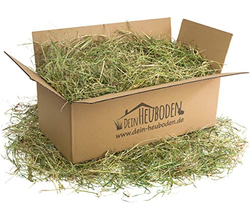 DeinHeuboden Heu 1.Schnitt 4kg Wiesenheu Kaninchen, Hasen, extra grob, lose verpackt