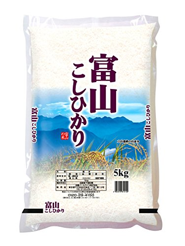 【精米】富山県産 白米 コシヒカリ 5kg 令和2年産