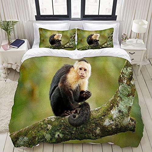 Juego de funda nórdica Mono negro capuchino de cabeza blanca sentado en la rama de un árbol en el...