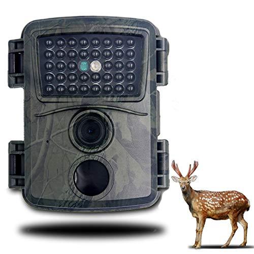 LHYAN Cámara Mini Trail 1080P HD Fauna Silvestre Scouting Cámara de Caza con cámara de Video Impermeable de la visión Nocturna IR