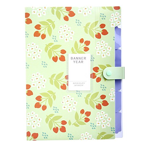 YOOFUN 5 Pockets Portable Accordion Document Expanding File Folder, Letter Size and A4 File Organizer (Green)