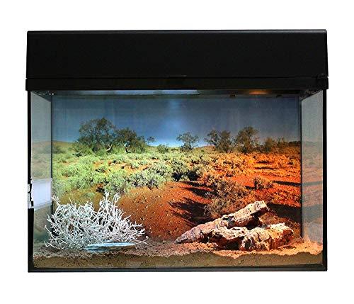 """Lucky Reptile Starter Kit 50 cm \""""Wüstengecko\"""" schwarz, Terrarium-Komplettset für kleinbleibende Geckos"""