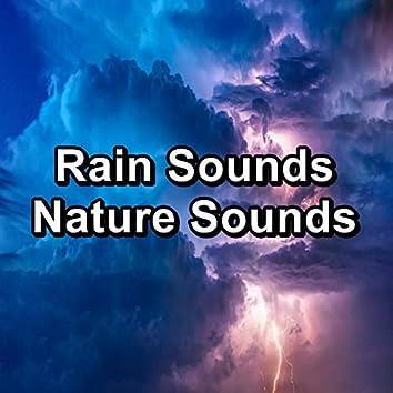 Rain Sounds Nature Sounds