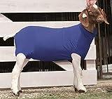 Weaver Leather Livestock Spandex Goat Tube , Blue , Large