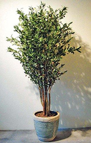 SALE: Exklusiver Olivenbaum Kunstpflanze mit Früchten ca. 120 cm getopft!