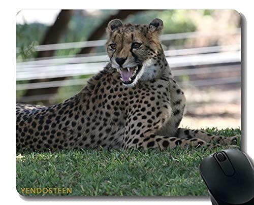 Podkładka pod mysz z krawędzią blokującą, Leopard Big Cat Predator 170456 Podkładki pod mysz