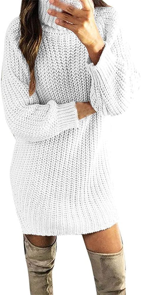 NP Women Turtle Neck Winter Autumn Knit Sweater Long Dress Comfortable Mujer
