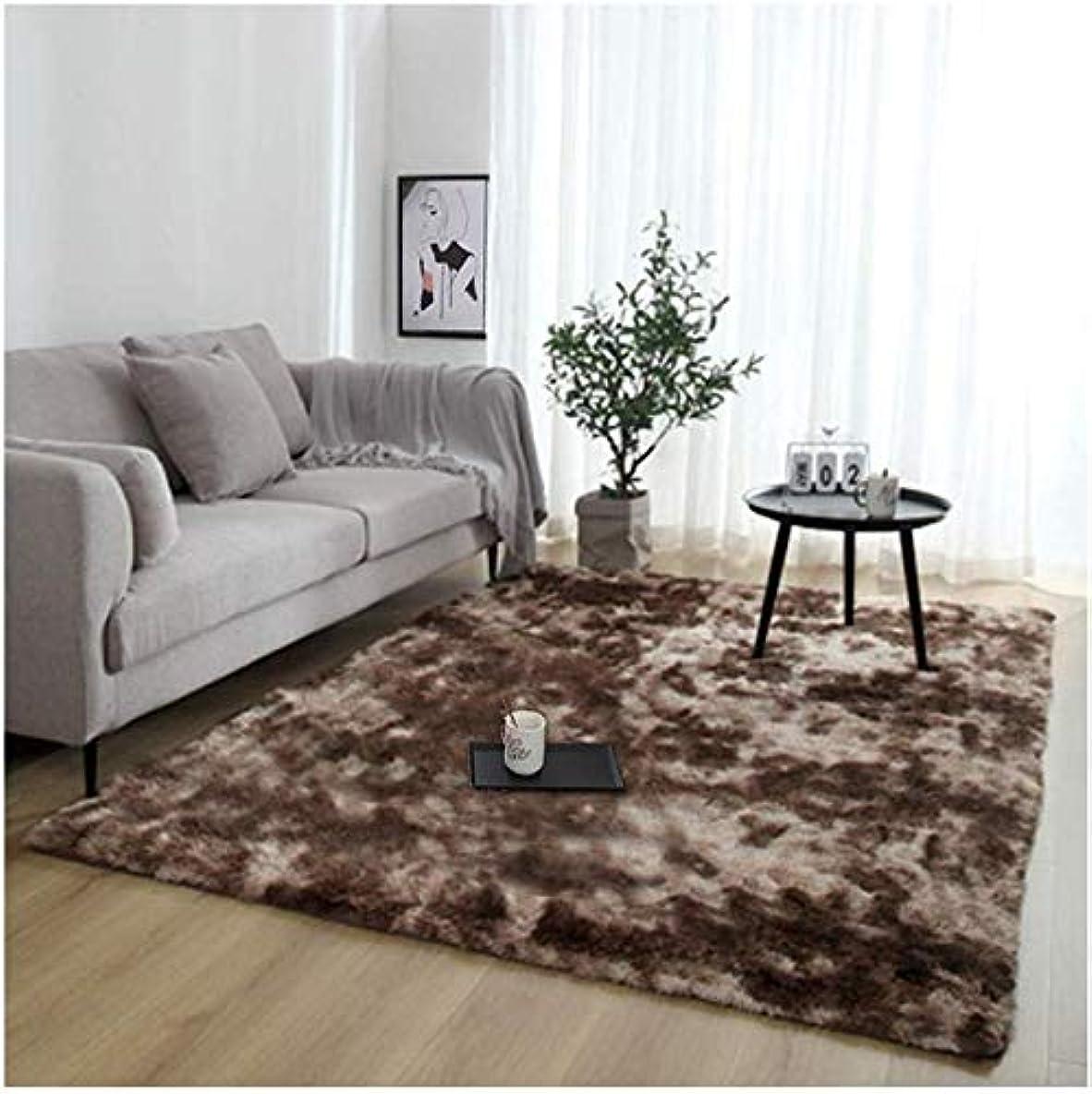 未使用忠誠超越するFlecked Twist Pile Carpet Roll Designer Carpet Hardwearing Action Backed Carpets(Color:Brown、Size:1x2m)