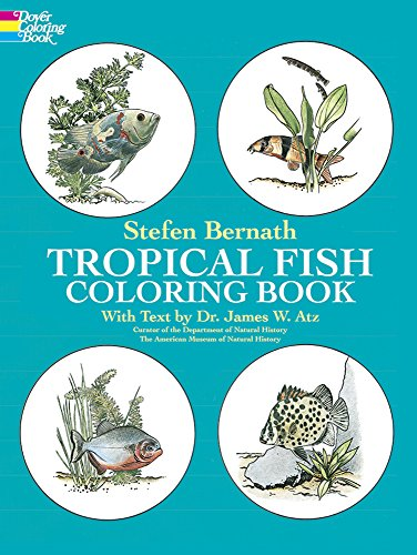 Tropical Fish : Coloring Book