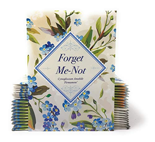 Vintage Look - Individual Forget Me Not Flower Seed Packet Favors - Ready to Give - Pack of 20