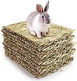 Yesland 12 colchonetas de tela para conejos, tapete para pasto, cama para conejos, cama de juguete masticable natural, cama para conejillos de indias, chinchillas, hámsters, animales pequeños