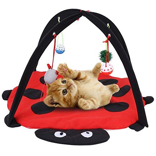 Pssopp Katzenbett Katzenzelt Faltbare Zelt Katze Spielzeug Interaktives Katzenspielzeug Waschbar Katzenkissen Katze Wurf Bett mit Hängende Spielzeug Glocken Bälle und Mäuse, 60 x 60 x 34 cm