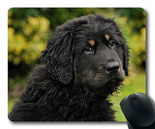 Eigene bierdeckel, die Hunde - Welpen Haustiere Hunde Schutz Mousepad, 阿克巴什 Hund Welpen Hund Bello Gaming Mouse Pad