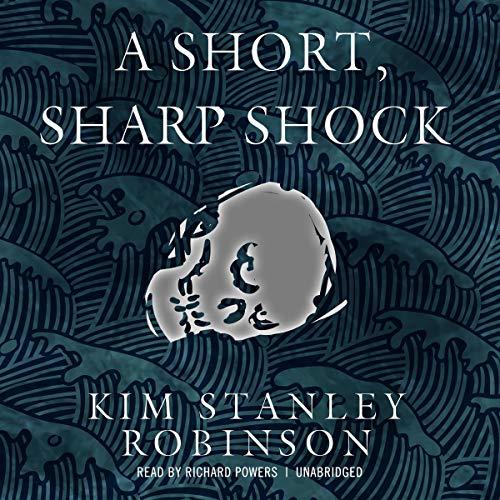 Page de couverture de A Short, Sharp Shock