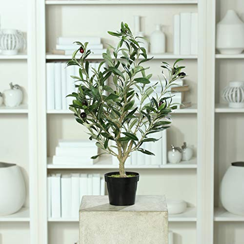 mucplants Künstlicher Olivenbaum mit ca. 11 schwarzen Oliven im schwarzen Topf Höhe 60cm Topfpflanze Kunstpflanze Olive