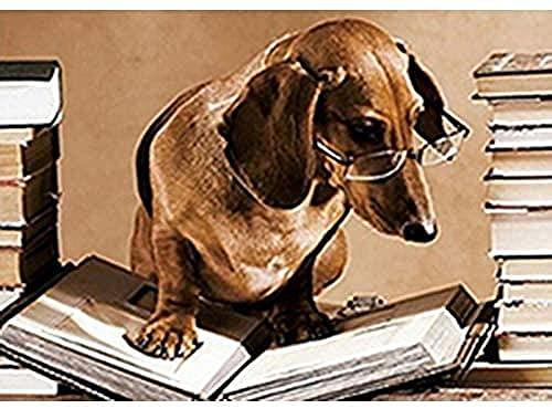 GEZHF Kits de pintura de diamante para adultos cachorro en gafas libro de lectura DIY 5D redondo taladro arte perfecto para relajación y decoración de pared del hogar 15 7 x 19 6 pulgadas