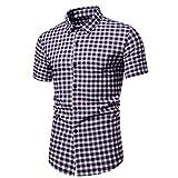 Holzkary Men's Button Down T-Shirts Regular-Fit Short Sleeve Plaid Stripe Casual Button Up Shirt(3XL.Blue-3)