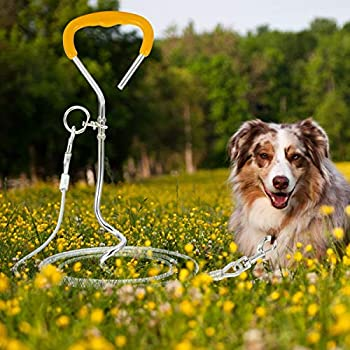 Qiraoxy Câble d'attache pour Chien Et Jeu de Piquets en Spirale Piquet en Fil d'acier Robuste pour Chien Jouant dans Le Jardin Extérieur