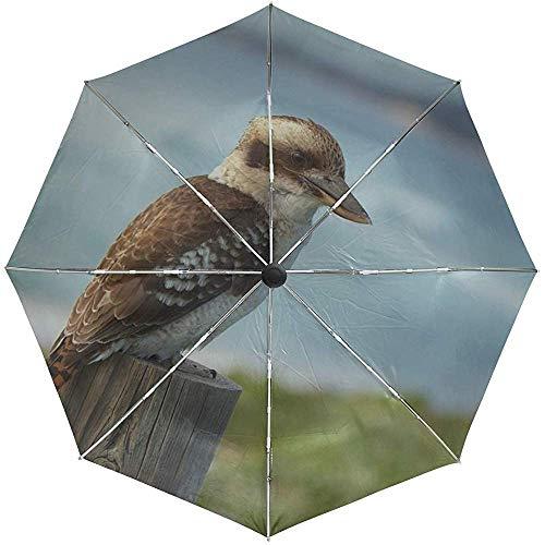 Automatischer Regenschirm Vogelsitzen Farbe Federn Reisen bequem Winddicht wasserdicht Falten Auto Open Close